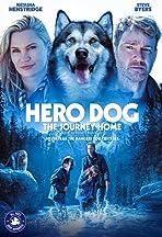 Hero Dog: The Journey Home