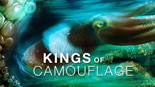 Top free movie watching site Kings of Camouflage by none [320x240]