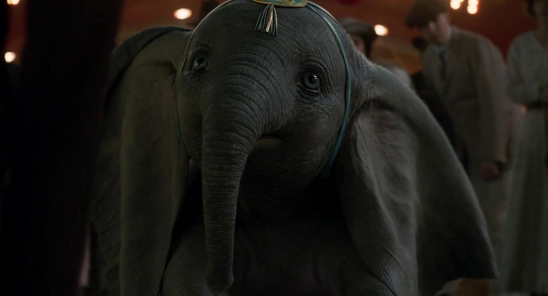 Film Dumbo 2019 Tribunnewswiki Com Mobile