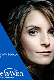 Power of a Wish Gala Poster