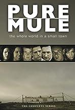 Pure Mule
