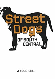 Primary photo for Street Dogs of South Central