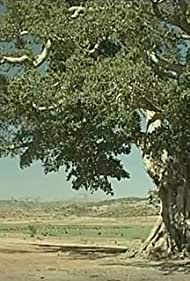 Le roccaforti d'Africa (1999)