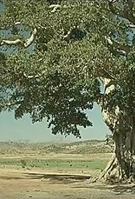 Primary photo for Le roccaforti d'Africa