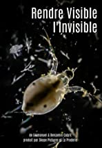 Rendre visible l'invisible