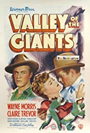 Valley of the Giants (1938) Poster - Movie Forum, Cast, Reviews