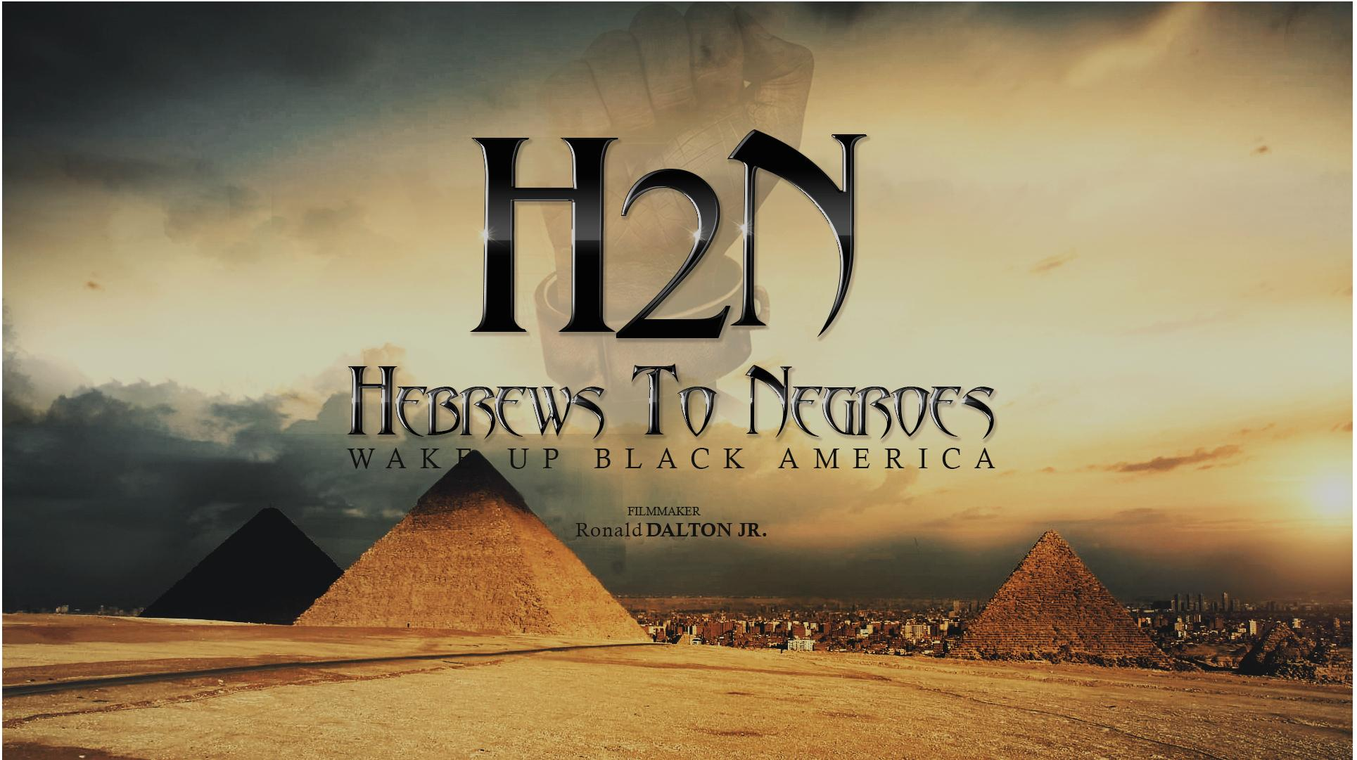 Hebrews to Negroes: Wake Up Black America (2018) - IMDb