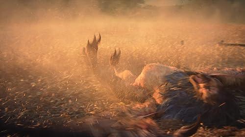 The Witcher 3: Wild Hunt TV Spot