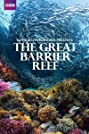 Great Barrier Reef with David Attenborough (2015) Poster