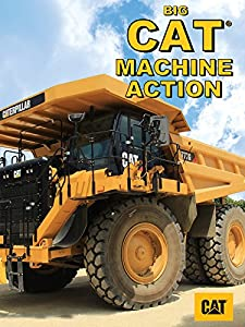 Adult watchmovies Big Cat Machine Action by none [mkv]
