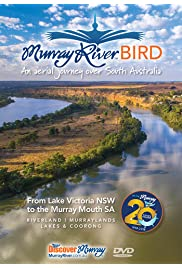 Murray River Bird over South Australia