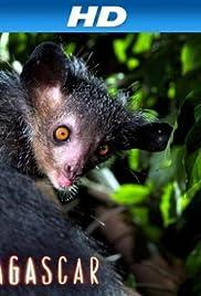 Madagascar (2011) 1080p