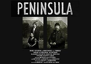 Where to stream Peninsula