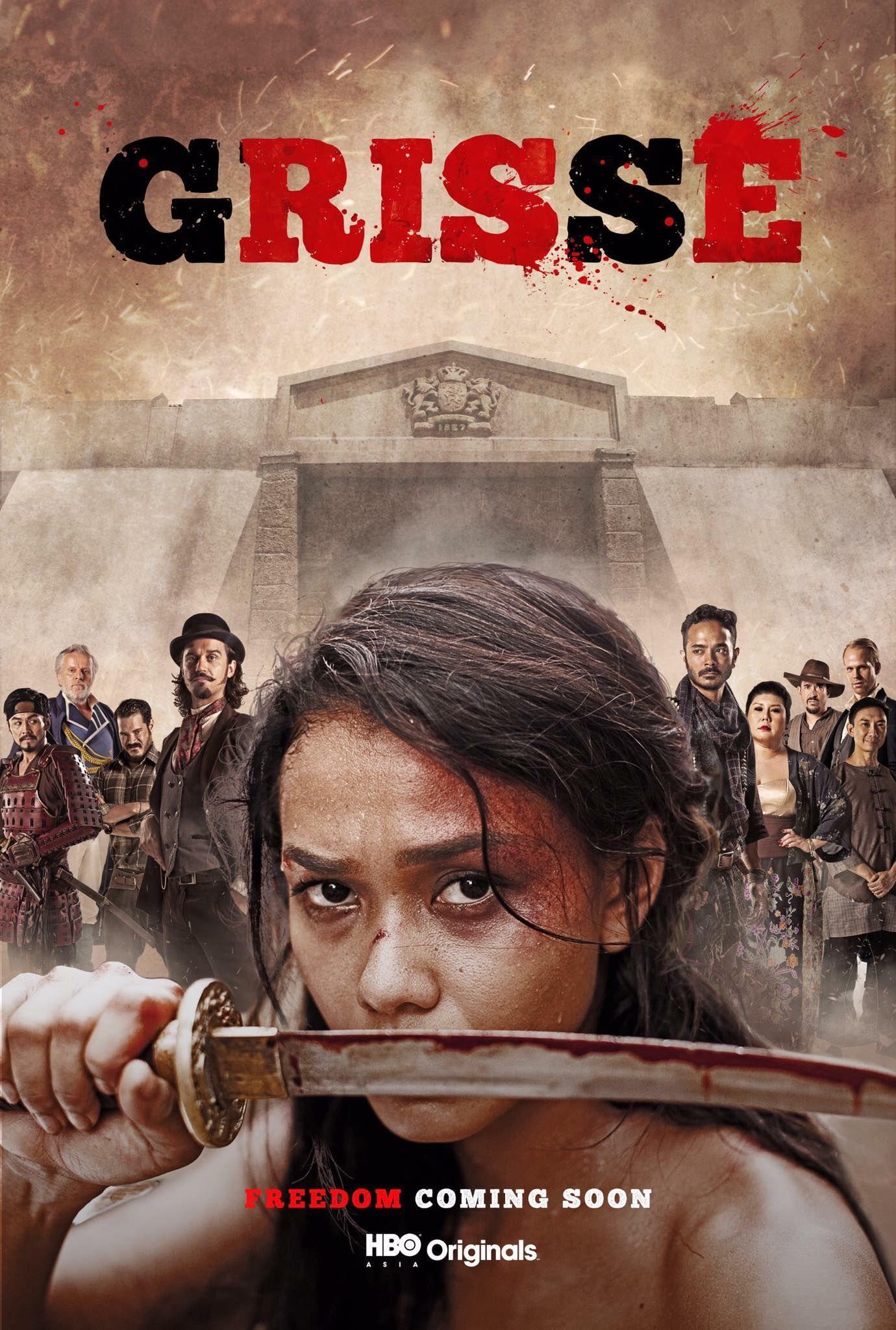 Grisse Tv Series 2018 Imdb
