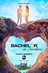 'Bachelor in Paradise' Couple Opens Up About the Franchise's Casting Woes