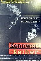 Kennwort... Reiher (1964) Poster