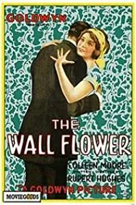 Top 10 download sites movies The Wall Flower [720x400]