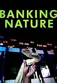 Banking Nature Poster