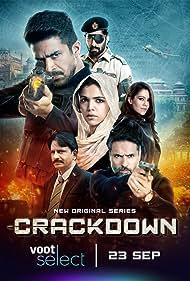 Crackdown (2020) Poster - TV Show Forum, Cast, Reviews