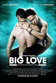 Big Love (2012)