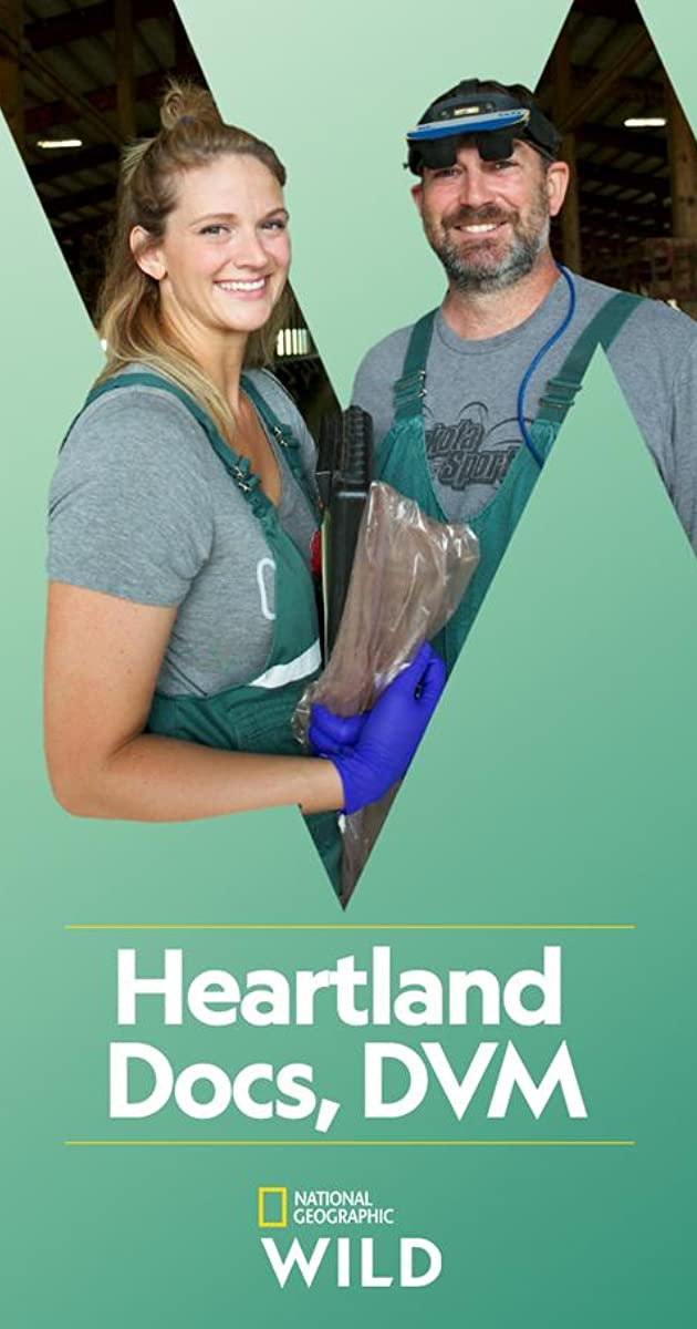 Download Heartland Docs, DVM or watch streaming online complete episodes of  Season 1 in HD 720p 1080p using torrent