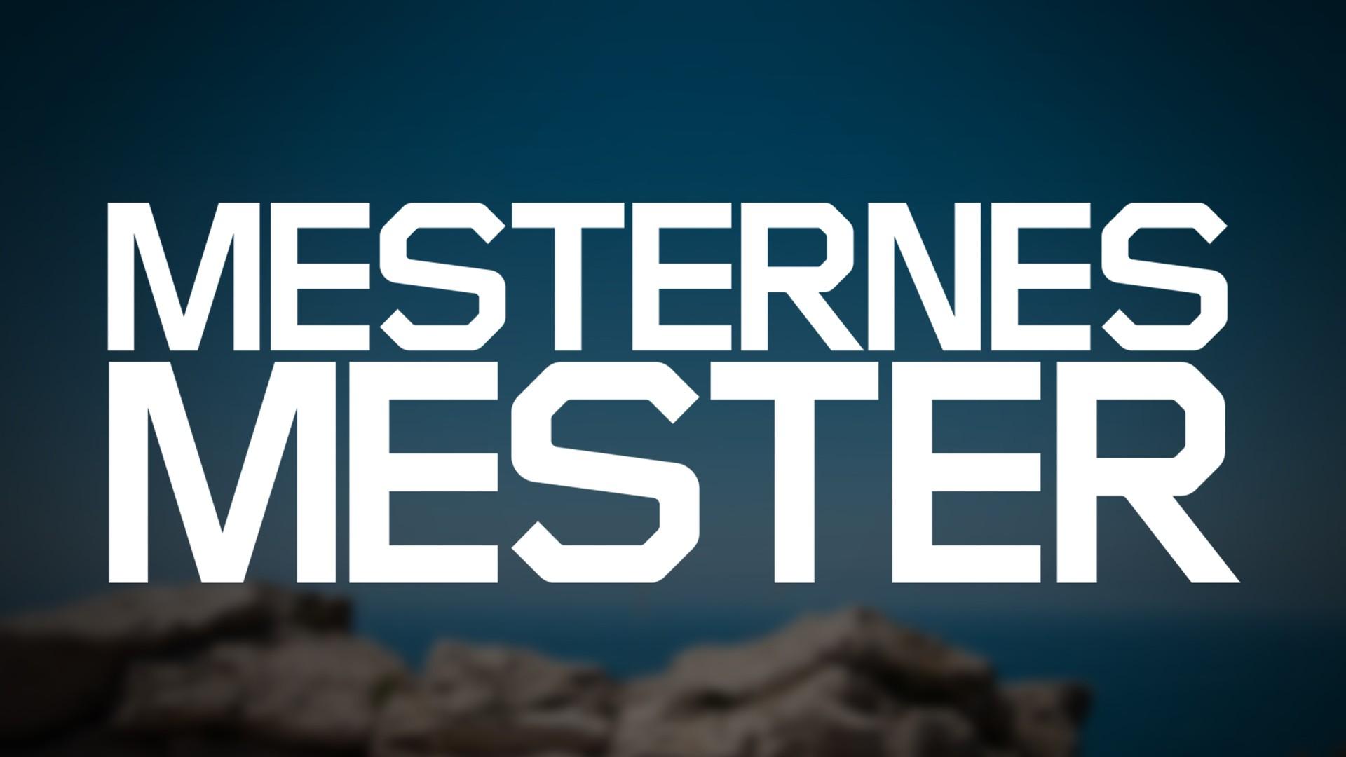 Mesternes Mester 2009