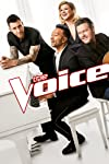 'The Voice' winners: Where are they now (Season 1 – 15 updates)?