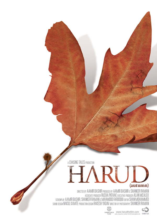 Harud 2010 Urdu 300MB Netflix HDRip Download