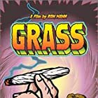 Grass (1999)