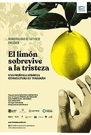 El Limón Sobrevive a la Tristeza