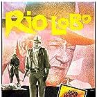John Wayne in Rio Lobo (1970)