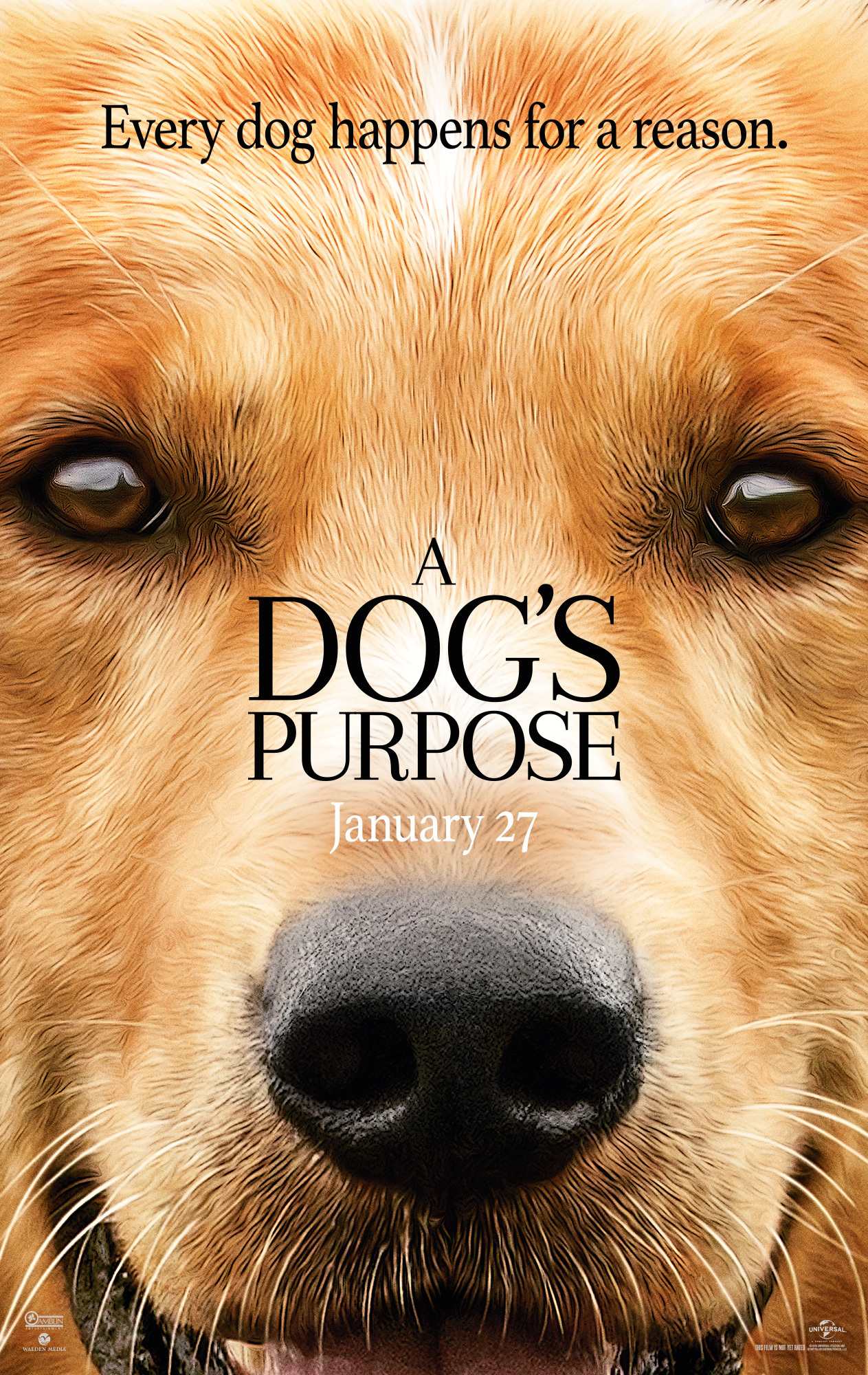 A Dog's Purpose (2017) - IMDb