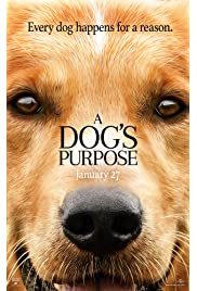 A Dog's Purpose (2017) film en francais gratuit