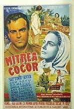 Mitrea Cocor