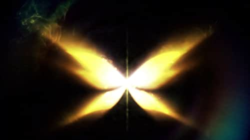 Fate: The Winx Saga: Season 2 (French Teaser Trailer)