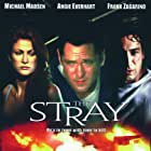 Michael Madsen, Angie Everhart, and Stefan Lysenko in The Stray (2000)
