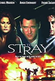 The Stray(2000) Poster - Movie Forum, Cast, Reviews