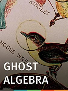 Watch online the notebook movie Ghost Algebra by [Quad]