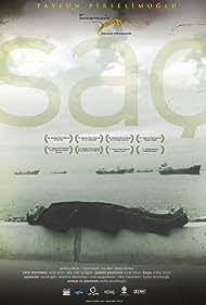 Saç (2010)