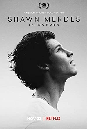 Shawn Mendes: In Wonder (2020)