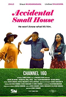Accidental Small House (2018)