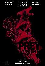 Prey by Night