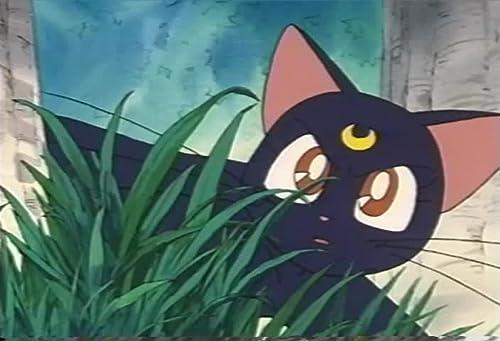 Sailor Moon: Pure Hearts