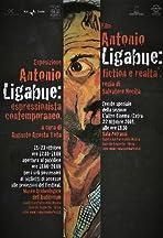 Antonio Ligabue: Fiction e realtà