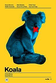 Primary photo for Koala