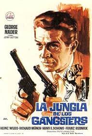 Schüsse aus dem Geigenkasten (1965)