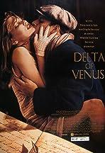 Delta of Venus