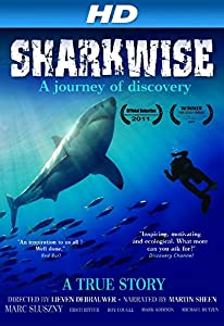 Movies mp4 video download Sharkwise Belgium [HD]