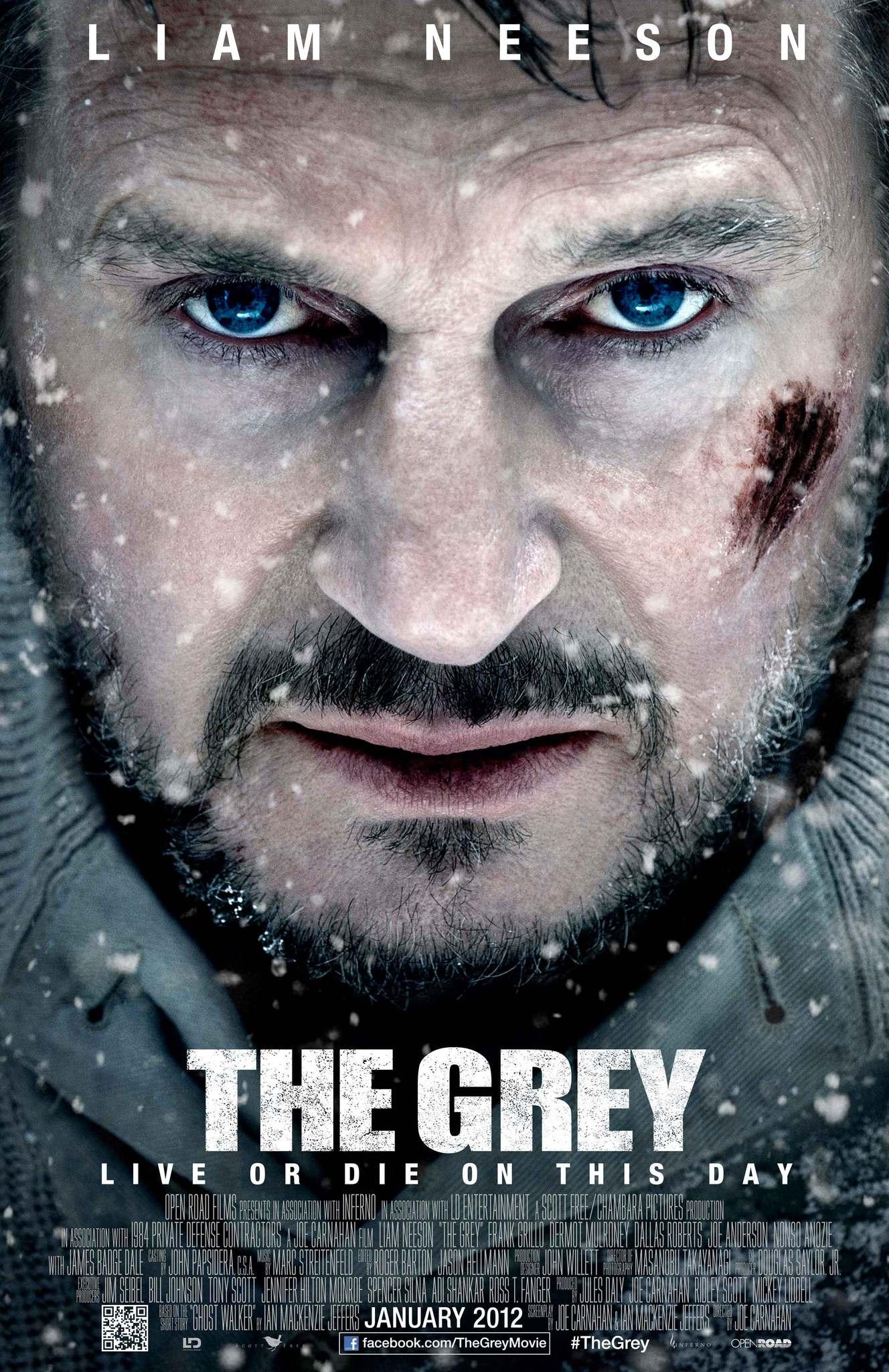 The Grey 2011 Imdb