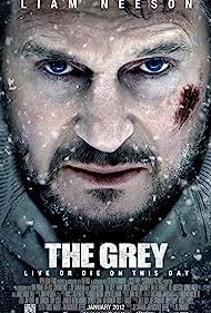 Liam Neeson in The Grey (2011)